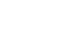 TDZ-primary-logo_white